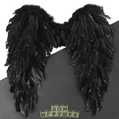 Крылья ангела чёрные